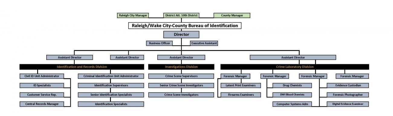 CCBI Organizational Chart