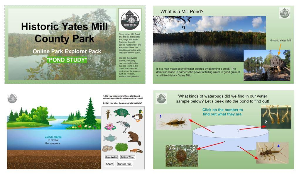 Yates Mill Pond Study Pack Collage