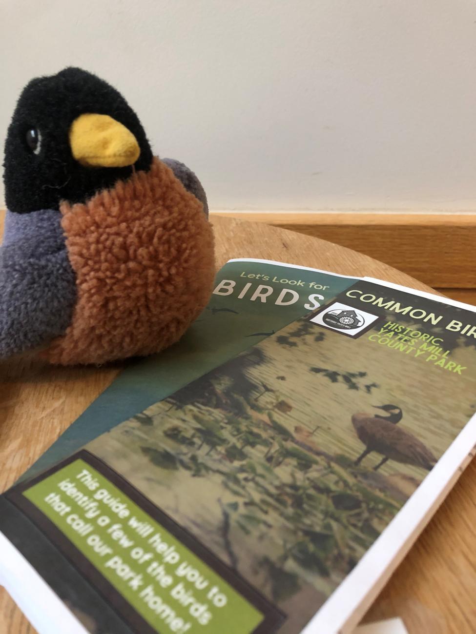 Yates Mill Bird Guides Photo