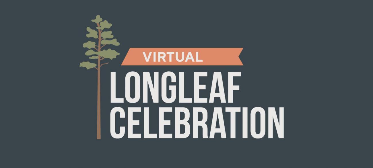 Virtual Longleaf Celebration graphic
