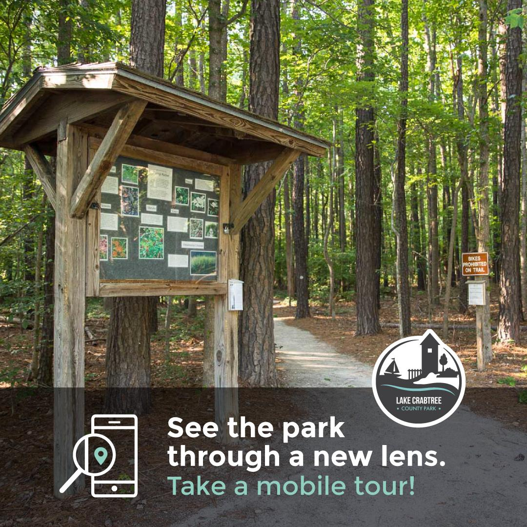 Mobile Tour graphic for Lake Crabtree Old Beech Nature Trail
