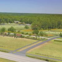 Beech Bluff Master Plan-Aerial Perspective