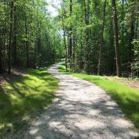 A walking or biking trail in Turnipseed Nature Preserve winding through the woods