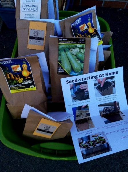 A Seed-starting At home kit tub with bags of seeds and instruction sheet.