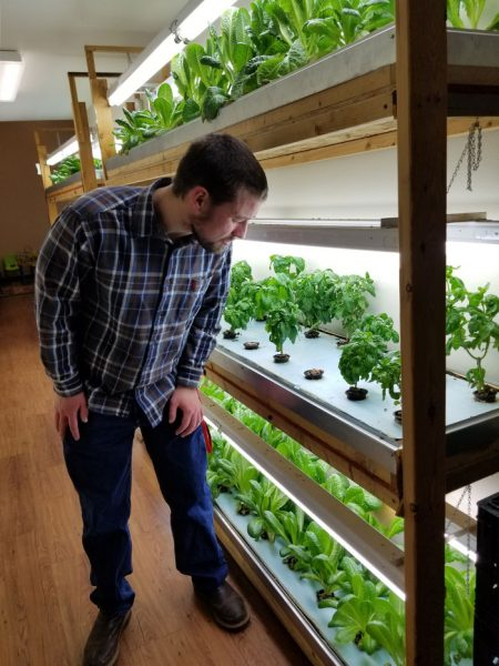 Jake Frazier looking at the plants in the hydroponic system.