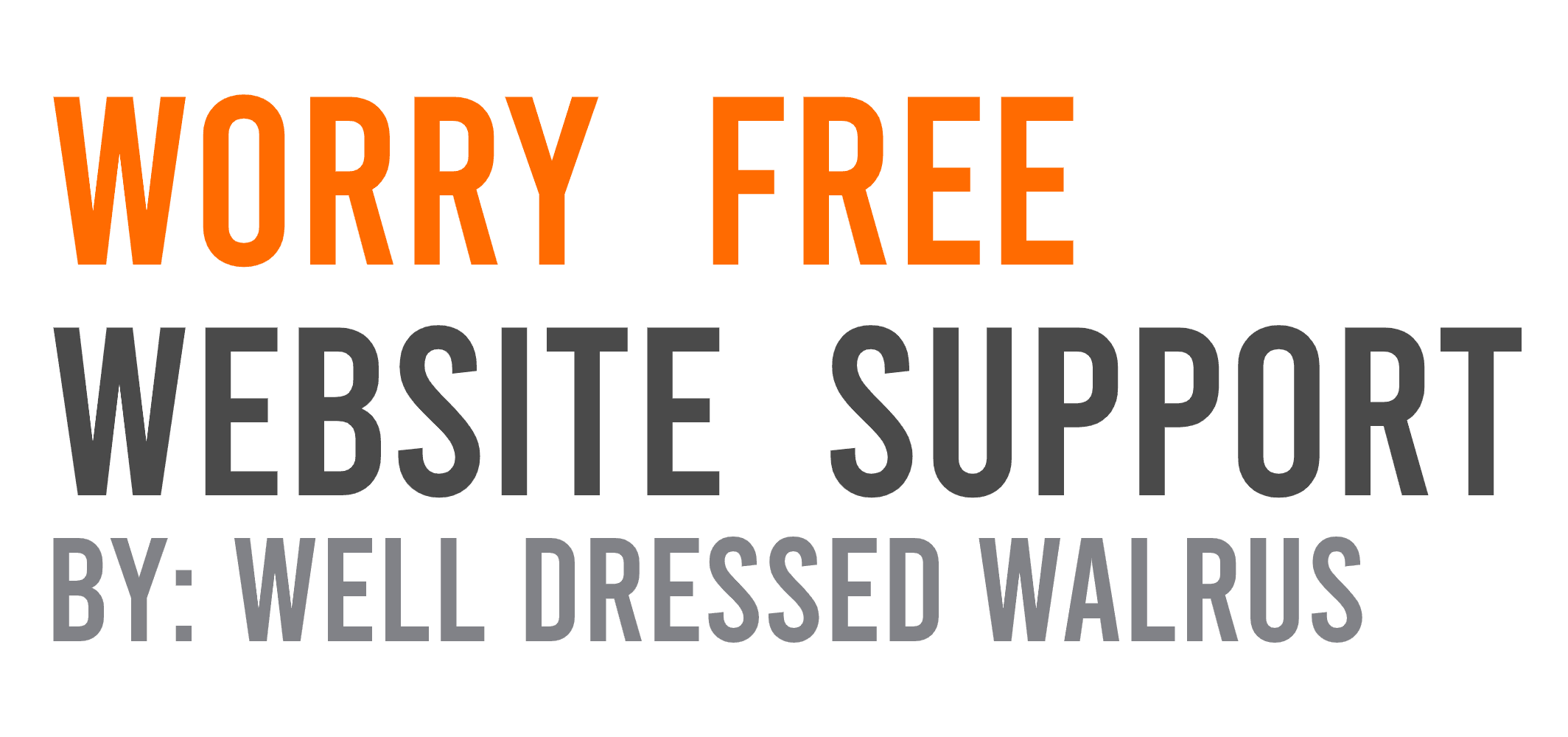 Worry Free Website Support