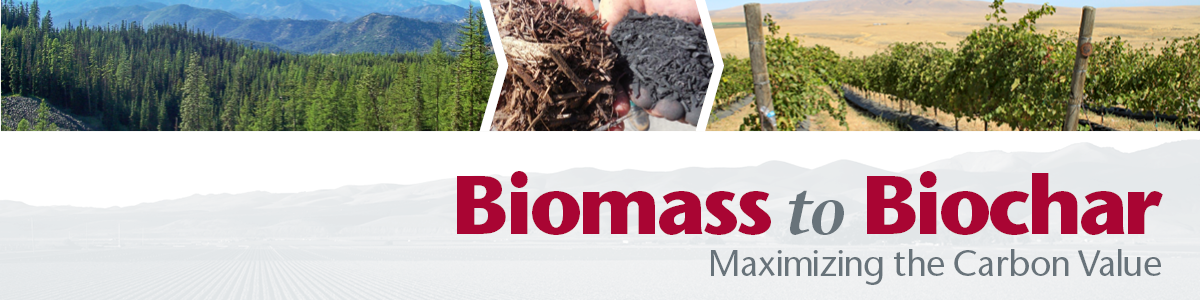 Biomass to Biochar: Maximizing the Carbon Value