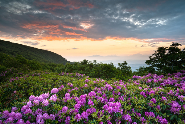 Blue Ridge Parkway Mountains-North Carolina
