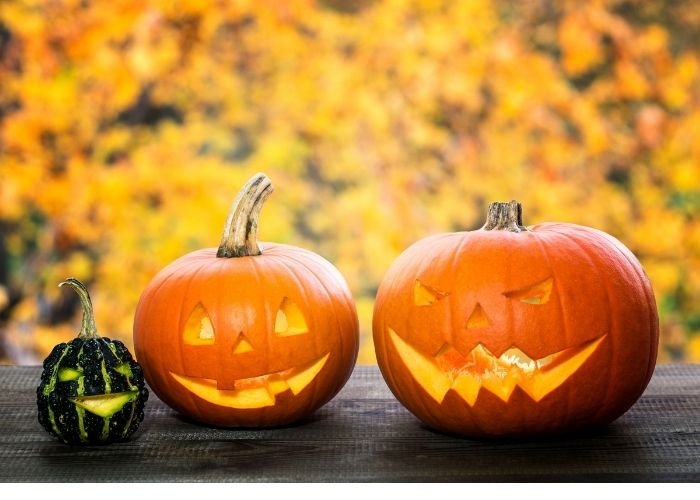 Pumpkins For Days: A Guide to Carving Jack O Lanterns