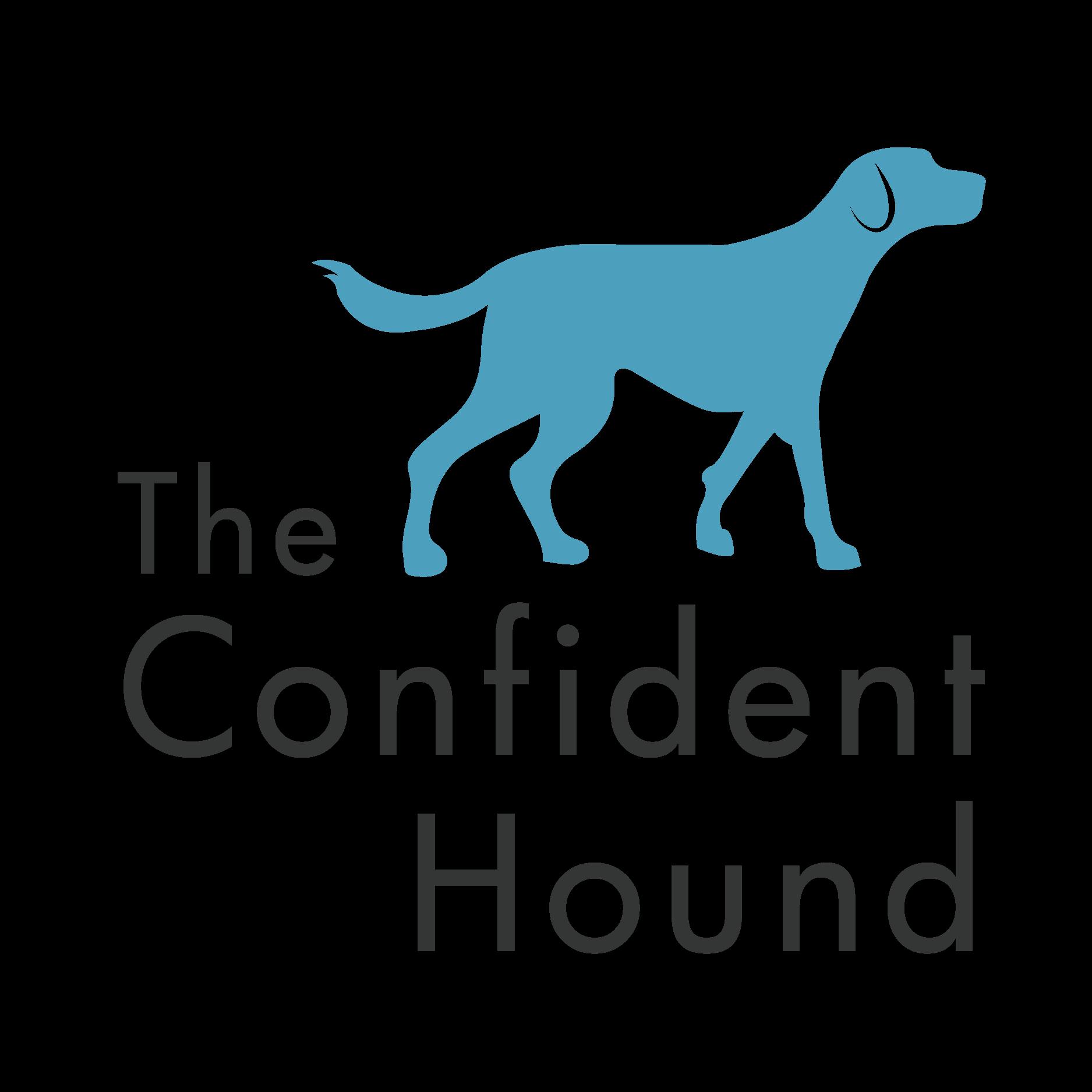 The Confident Hound: Initial Consultation