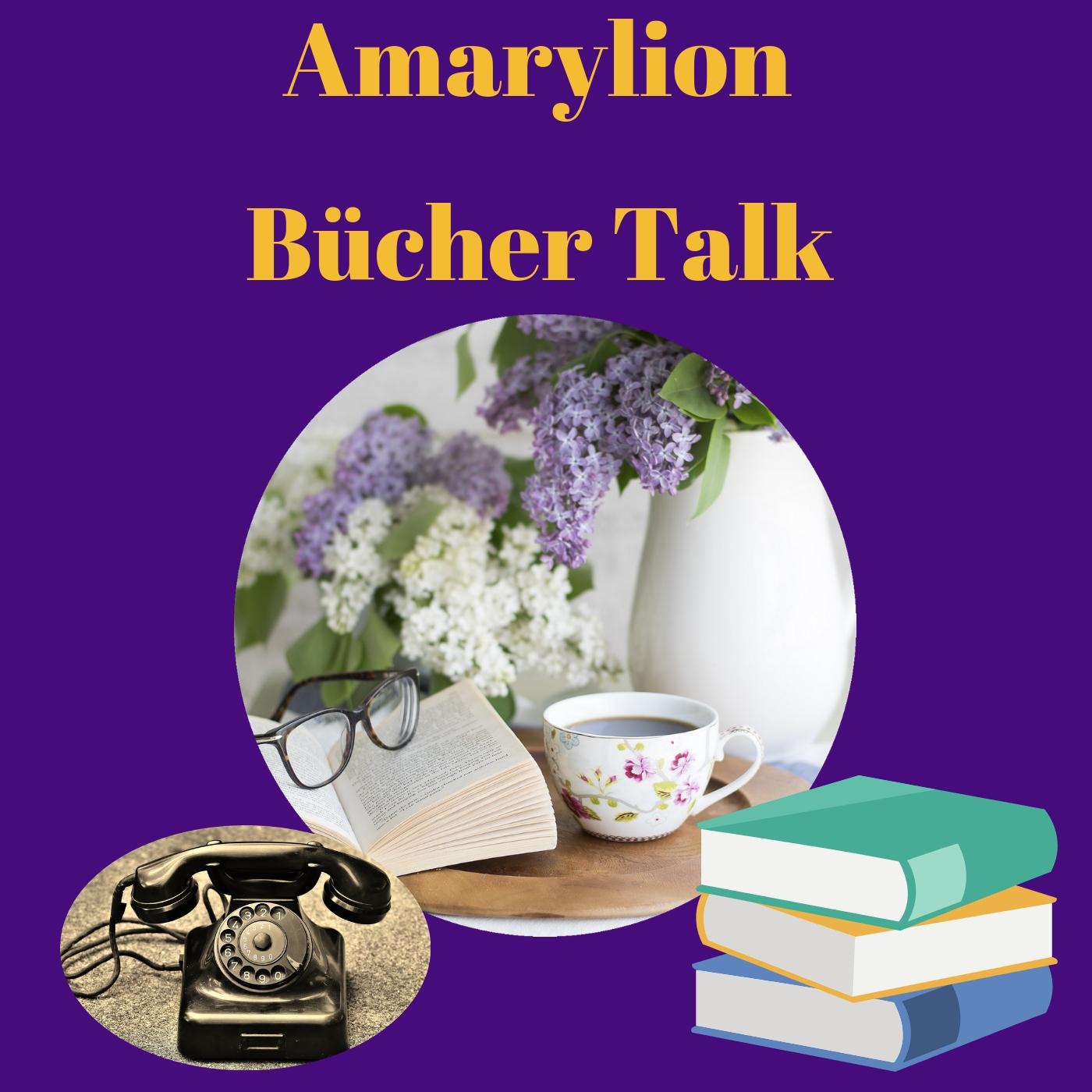 Dein Buch im Amarylion Bücher Talk