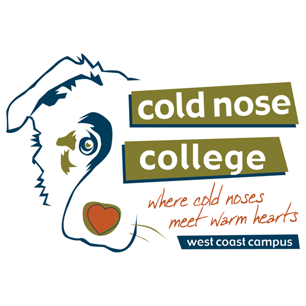 Cold Nose College Distance Consultation
