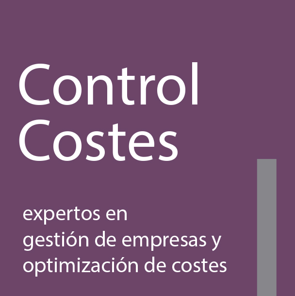 Consultoría ControlCostes