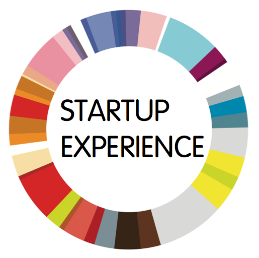 Call with Henrik Scheel from Startup Experience