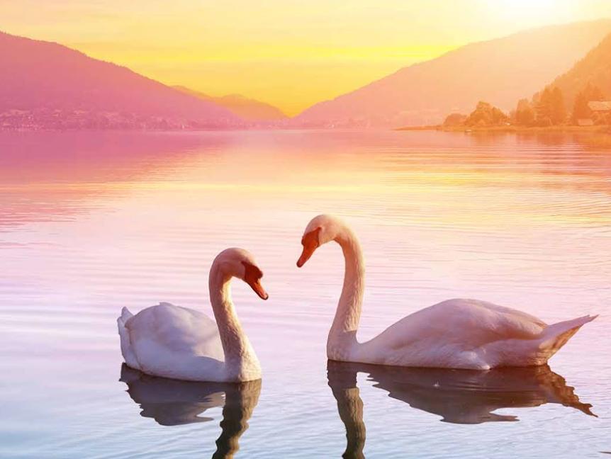 Golden Life Healing