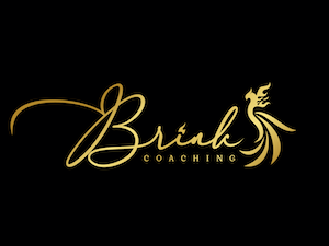 brinkcoaching.com