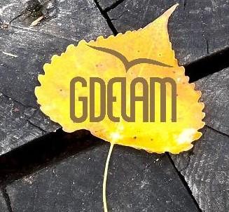 Grégoire Delamerie - Agence Web Gdelam 47320 Clairac