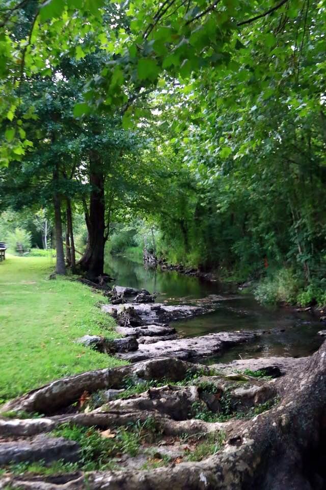 Sinking Creek Farm