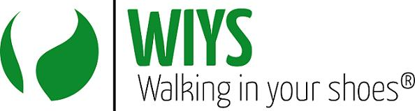 WIYS-Akademie Einführungskurs online 5h