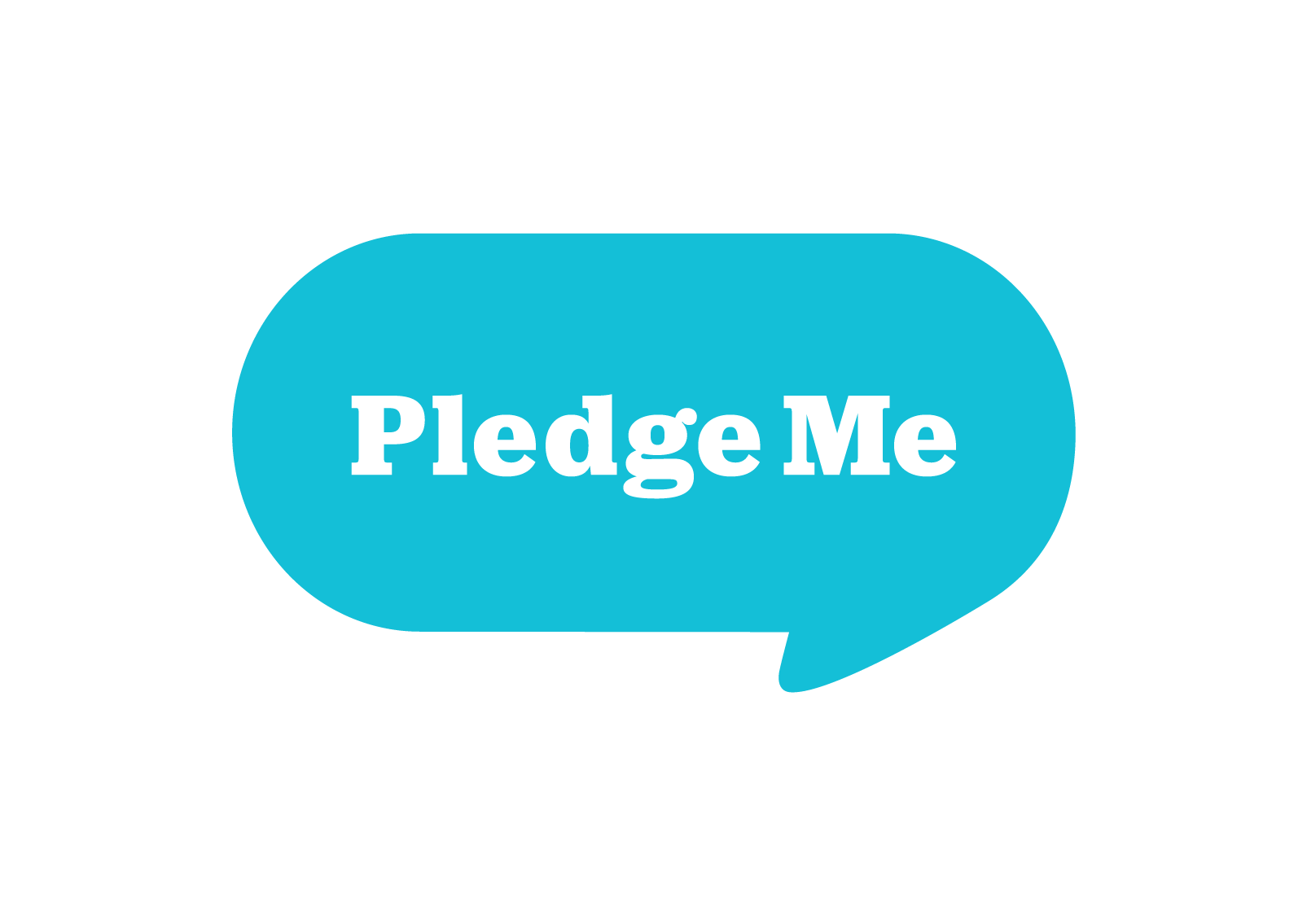 PledgeMe Campaign Support & Brainstorming