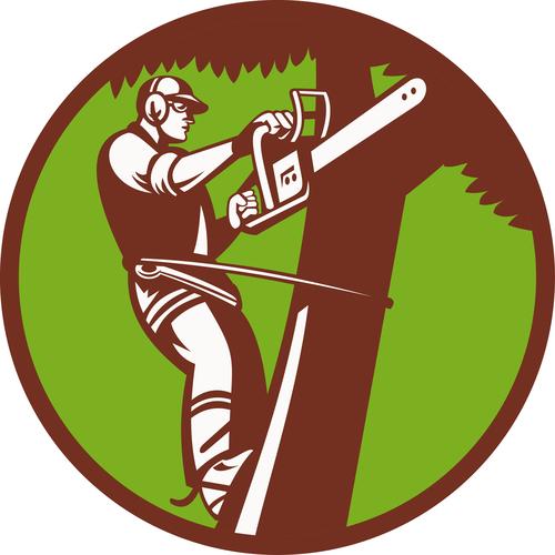 Peoria Tree Services