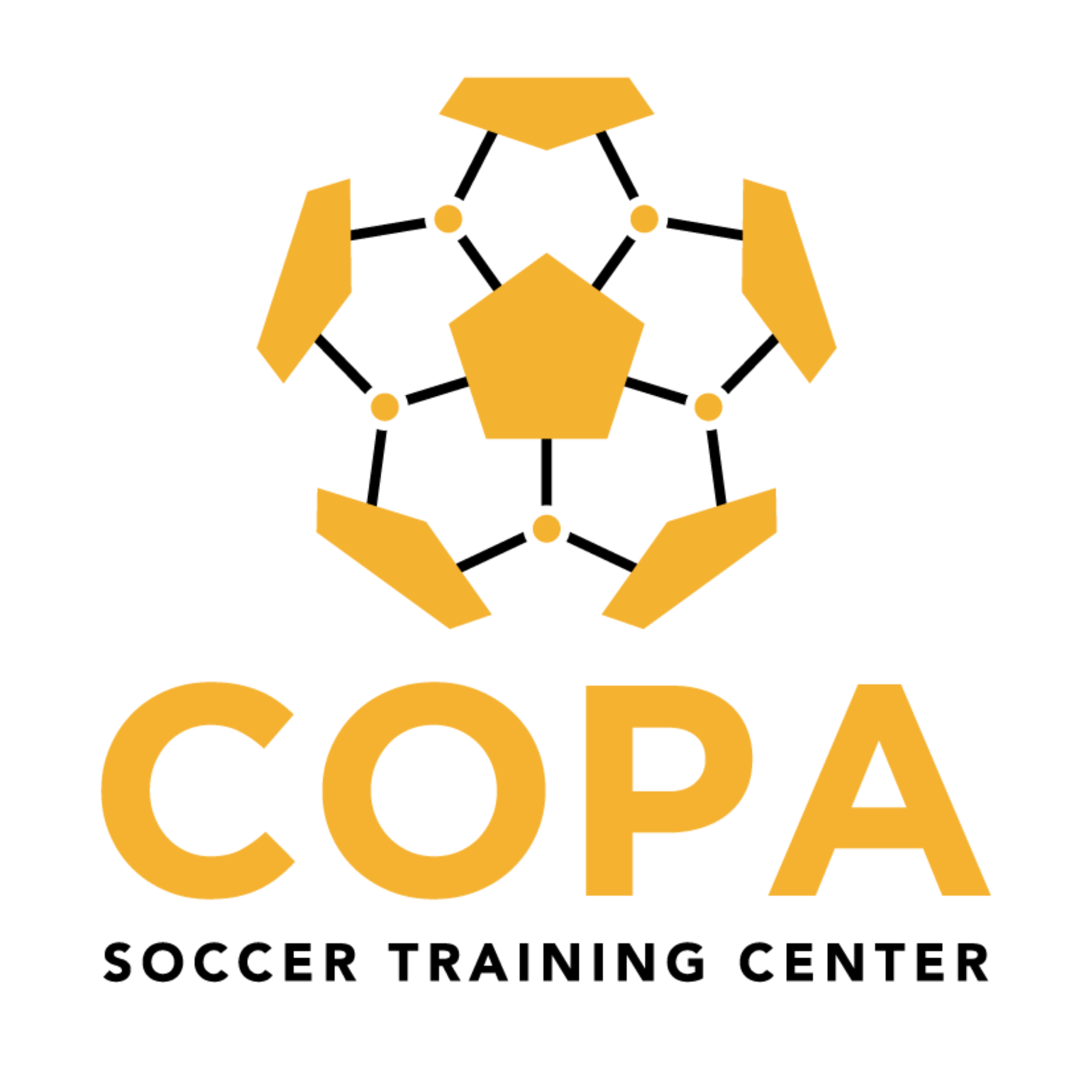 Welcome to COPA STC!