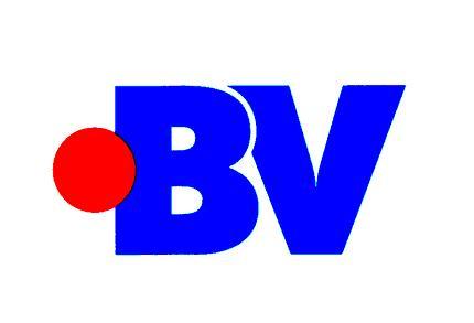 BV Asesores - Departamento Fiscal