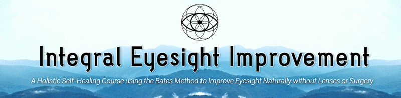 Integral Eyesight Improvement LLC