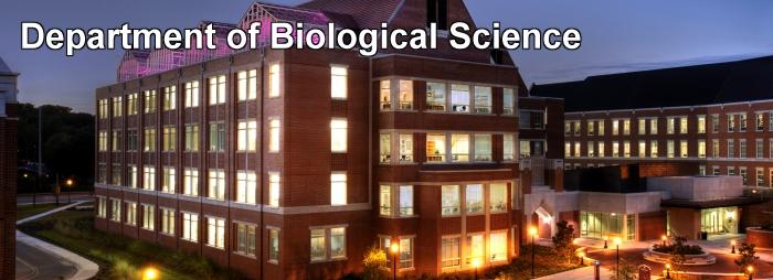 Biology Advising