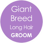 Tazzy & Boo Dog Groom - Giant Breed with Long Hair