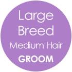 Tazzy & Boo Dog Groom - Large Breed with Medium Hair