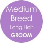 Tazzy & Boo Dog Groom - Medium Breed with Long Hair
