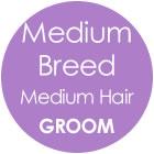 Tazzy & Boo Dog Groom - Medium Breed with Medium Hair
