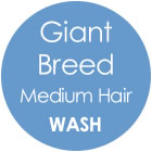 Tazzy & Boo Dog Wash - Giant Breed with Medium Hair