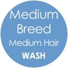 Tazzy & Boo Dog Wash - Medium Breed with Medium Hair