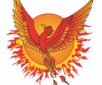 phoenixfoundation.ca