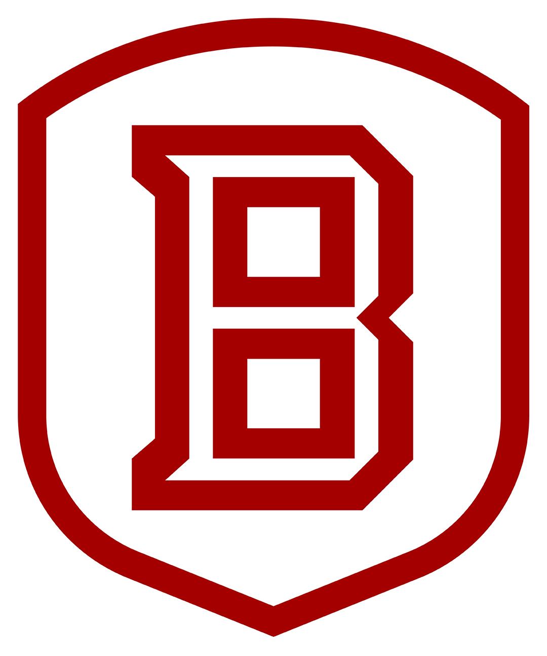 Bradley University, Smith Career Center Employer Services - Carmen Umberger