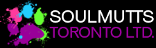 Soulmutts Toronto Meet & Greet Booking