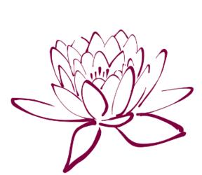 Emerging Lotus ~ Sarah Schweikert